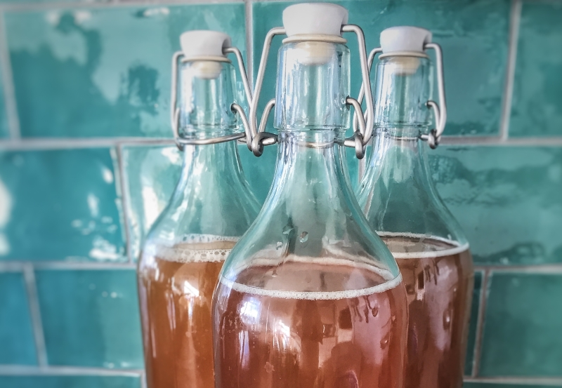 Is Kombucha Vegan?