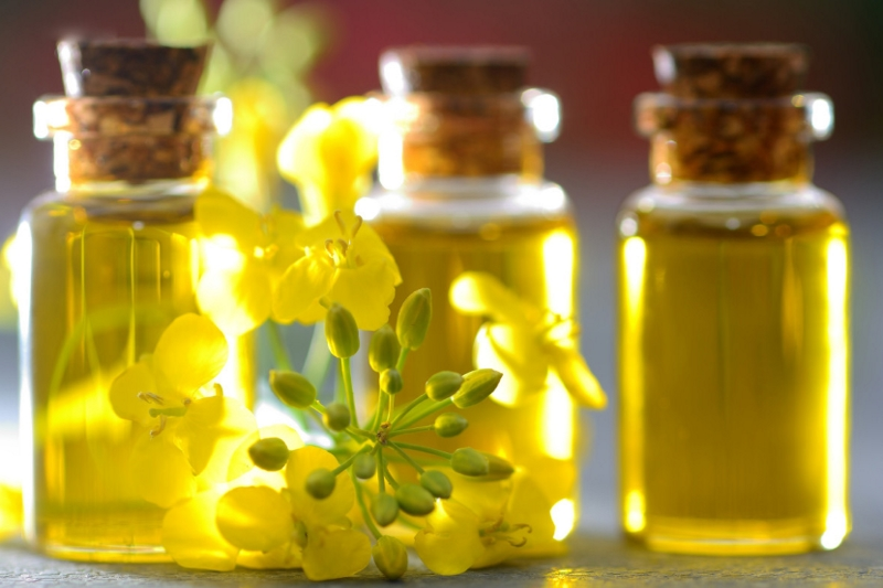 Is Canola Oil Vegan?